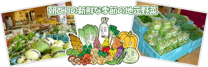 朝どり地元野菜